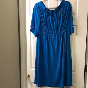 Gorgeous Suzy Chin dress